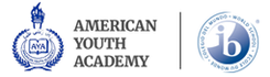 American Youth Academy